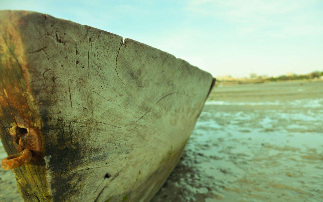 barca msasani bay